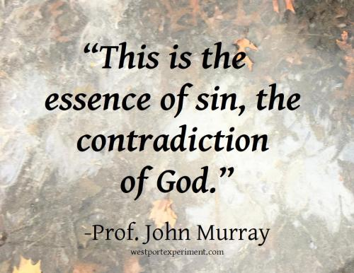 Murray, Essence of Sin