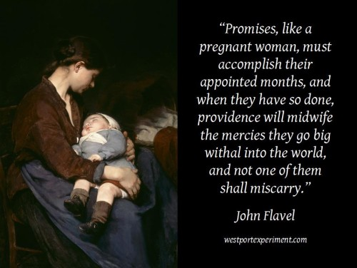 Flavel, Promises as a pregnant woman
