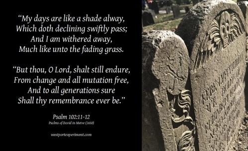 Psalm 102'11-12 PsDM